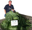 Giant Gardening Cabbage heaviest record photo