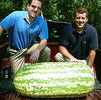 Giant Gardening Watermelon heaviest record photo